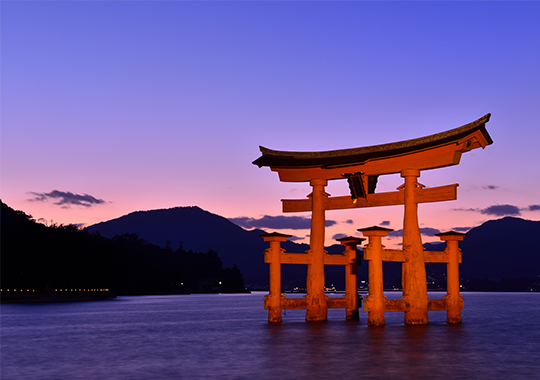 JCA 2020 第79回日本癌学会学術総会【ライブ&Web開催】 開催都市 イメージ