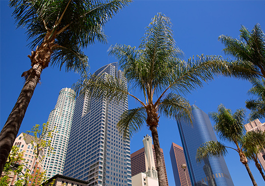 ANA 2020 第145回米国神経学会議【コロナウィルスの為、バーチャル会議に変更】 開催都市 イメージ
