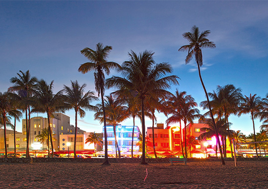 Art Basel Miami Beach Art Basel Miami Beach 開催都市 イメージ