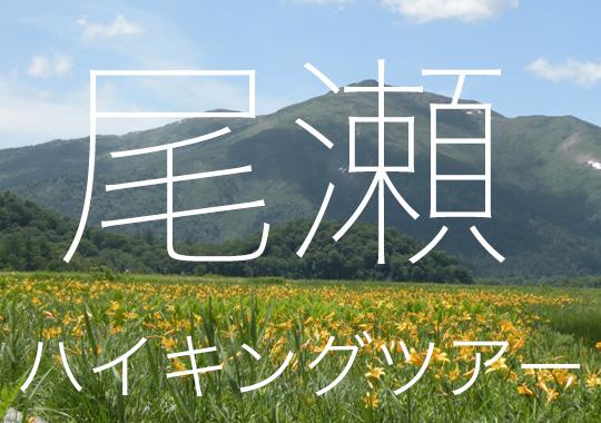 尾瀬ハイキングツアー